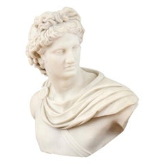 19th Century Italian School White Marble Bust of Apollo