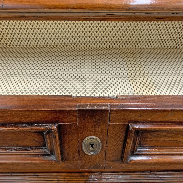 19th Century Italian Walnut Chest of Drawers For Sale 5