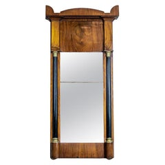19th Century Karl Johan Mirror