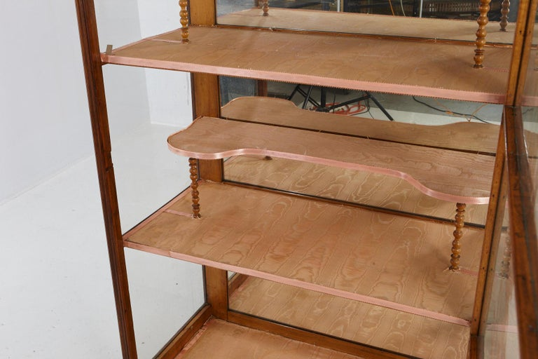 19th Century Late Biedermeier Walnut Display Cabinet / Vitrine 7