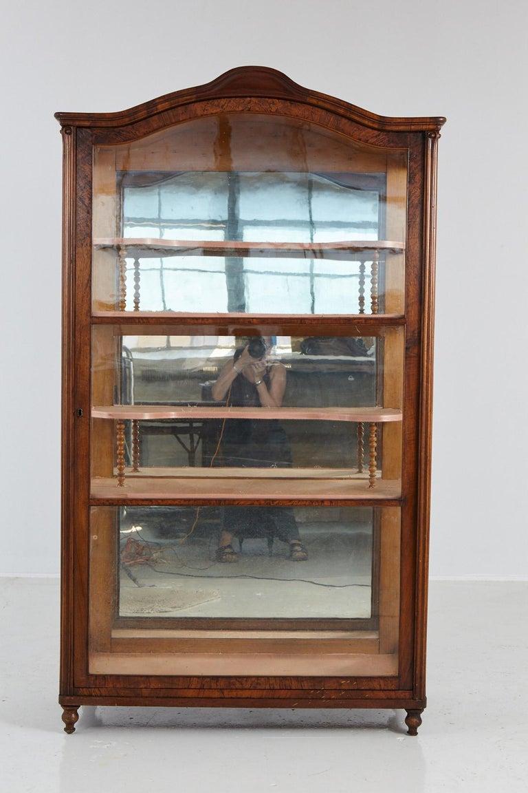 German 19th Century Late Biedermeier Walnut Display Cabinet / Vitrine