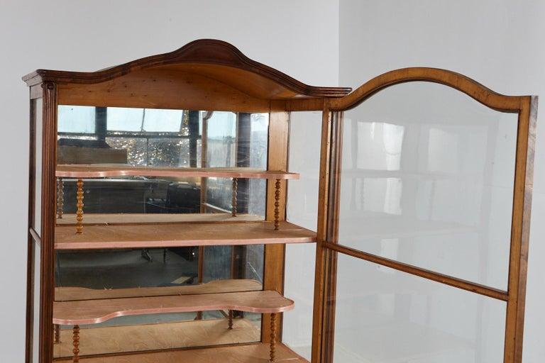 Mirror 19th Century Late Biedermeier Walnut Display Cabinet / Vitrine