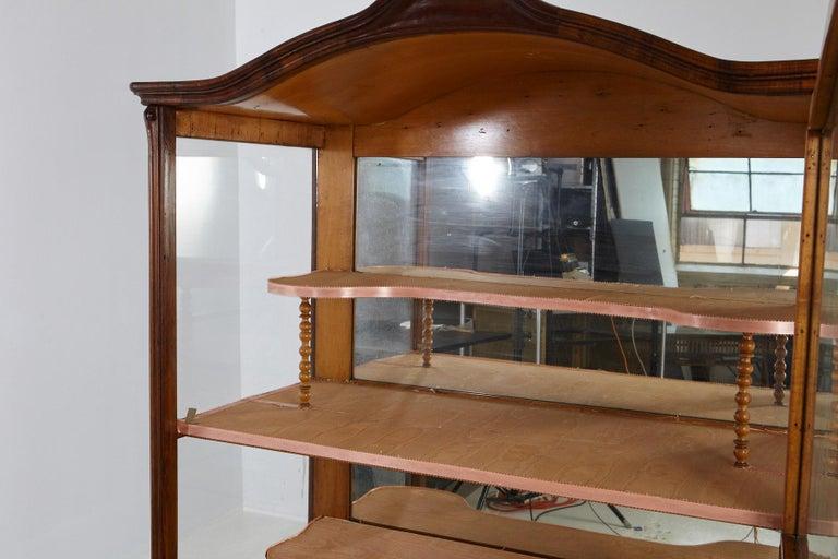 19th Century Late Biedermeier Walnut Display Cabinet / Vitrine 1