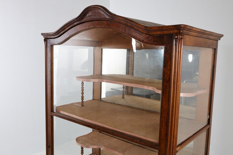 19th Century Late Biedermeier Walnut Display Cabinet / Vitrine 2