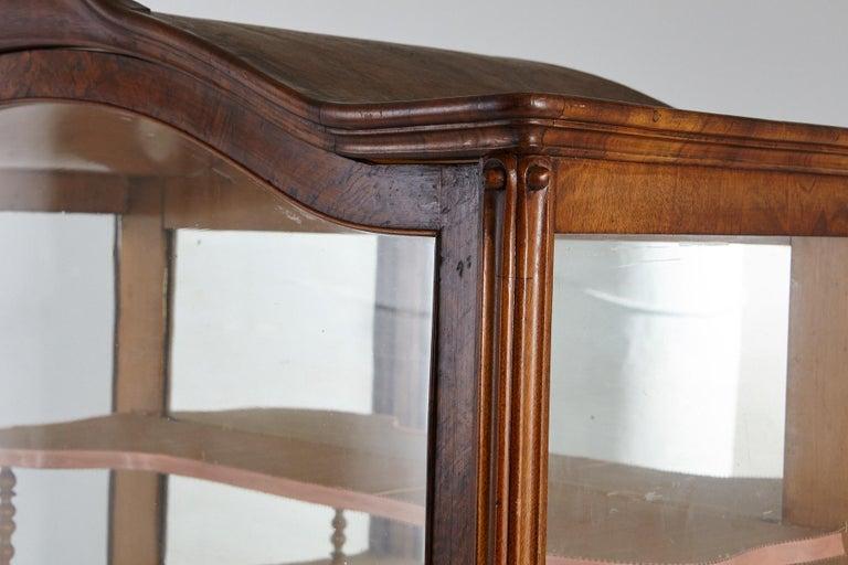 19th Century Late Biedermeier Walnut Display Cabinet / Vitrine 3
