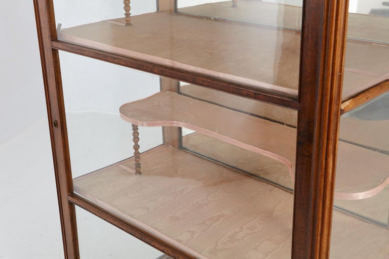 19th Century Late Biedermeier Walnut Display Cabinet / Vitrine 4
