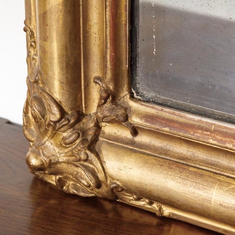 19th Century Louis Philippe Period Giltwood Mirror For Sale 7