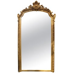 19th Century Louis XV Style Giltwood Floor Mirror