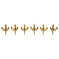 19th Century Louis XVI Style, Chiseled Gilded Bronze Set of 6 Appliques