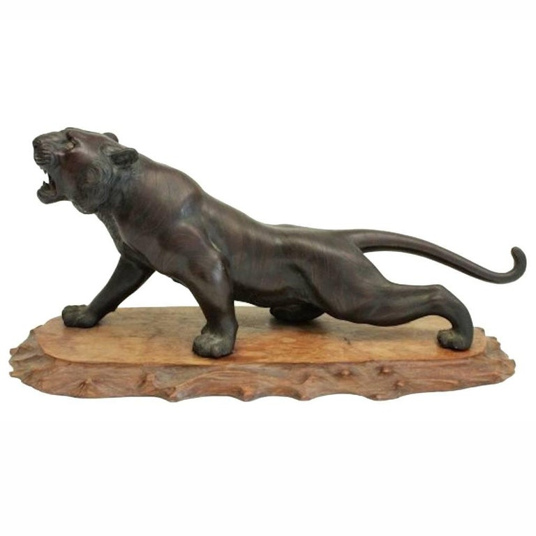 A stunning Meiji period bronze tiger stood upon root wood stand.