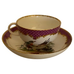 19th Century Meissen Hand Painted Cup and Saucer