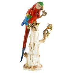 19th Century Meissen Porcelain Parrot