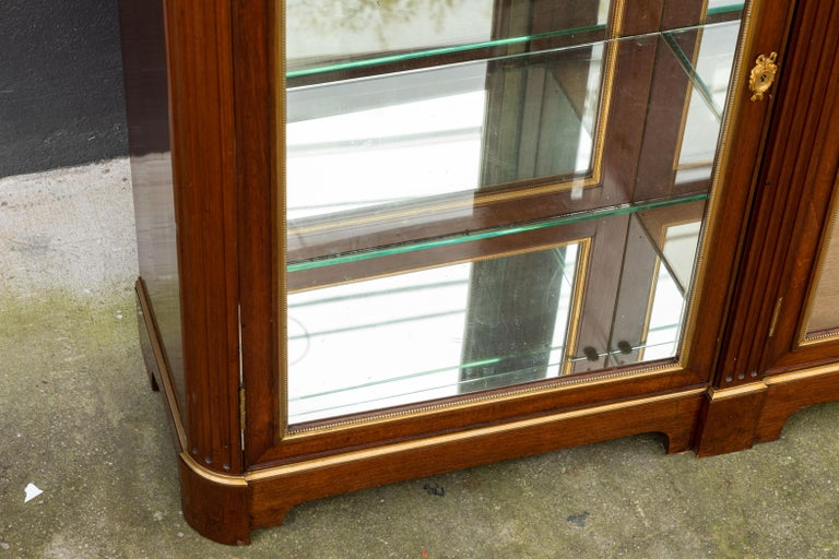 19th Century Monumental French Bronze Mounted Bookcase/Vitrine For Sale 1