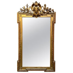 19th Century Napoleon III Carved and Giltwood Mirror