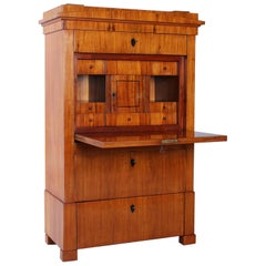 19th Century Narrow Biedermeier Secretary, Padouk, Antique Secretaire circa 1825