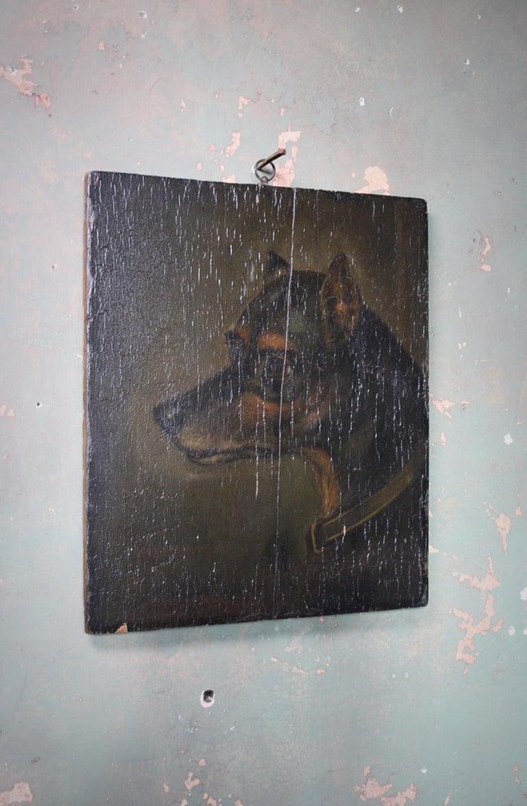 19th Century Oil on Board, English Toy Terrier Dog Folk Art For Sale 1