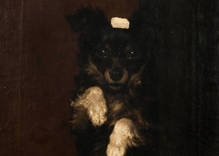 19th Century Oilpinting, Portrait of a Dog by César Geerinck For Sale 2