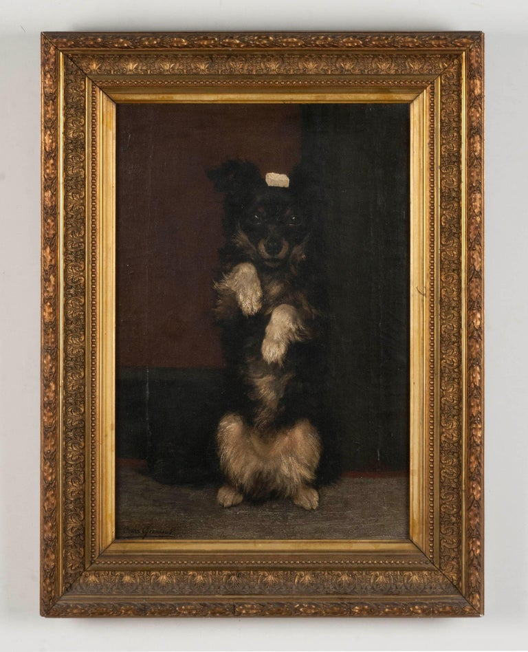 A wonderful portrait of a cheerful dog that does a trick. The dog has a sugar cube on his head and is sitting up. The painting was made, circa 1900 by the Flemish painter César Geerinck. This is not a very famous artist, he has painted a few other