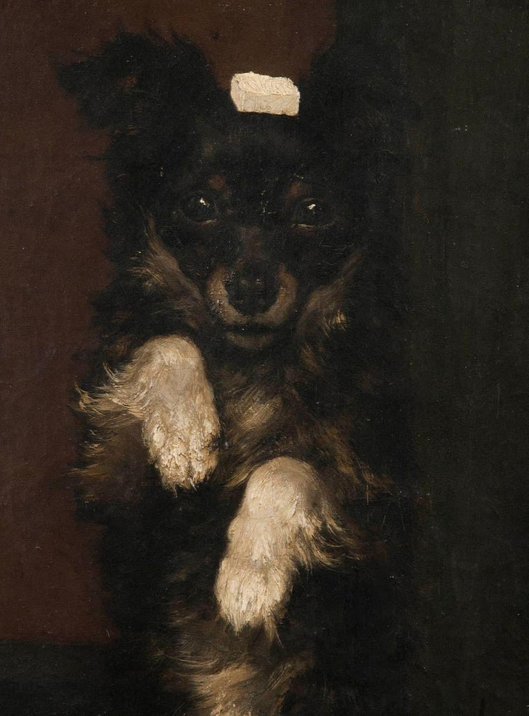 Belgian 19th Century Oilpinting, Portrait of a Dog by César Geerinck For Sale