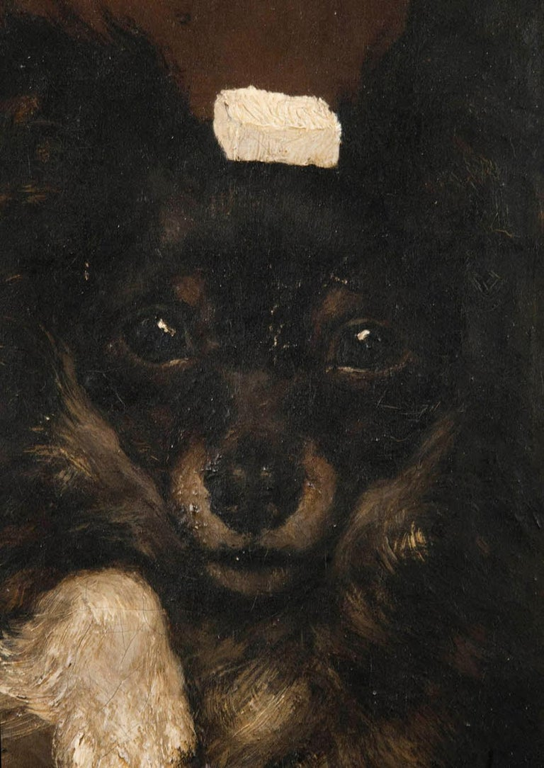 19th Century Oilpinting, Portrait of a Dog by César Geerinck In Good Condition For Sale In Casteren, Noord-Brabant
