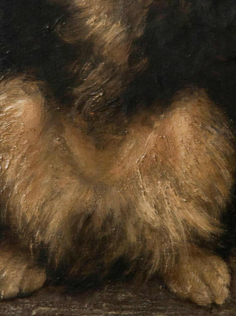 Late 19th Century 19th Century Oilpinting, Portrait of a Dog by César Geerinck For Sale
