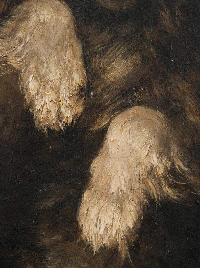 Paint 19th Century Oilpinting, Portrait of a Dog by César Geerinck For Sale