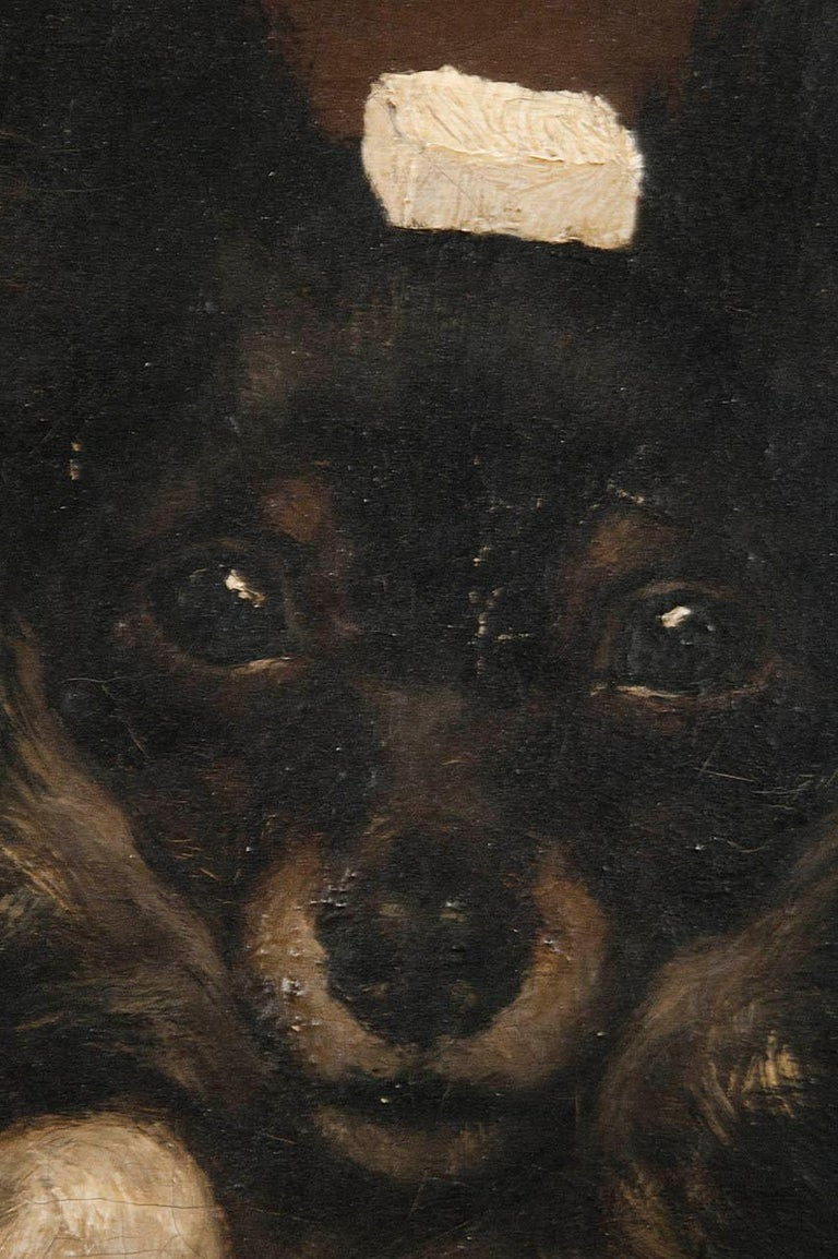 19th Century Oilpinting, Portrait of a Dog by César Geerinck For Sale 1