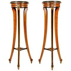 19th Century Pair of English Sand Wood Mahogany Stand / Pedestal