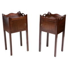 19th Century Pair of Bedside Lockers