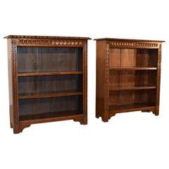 19th Century Pair of Bookcases