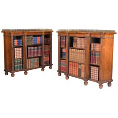19th Century Pair of English Regency Open Bookcases Attributed to Gillows