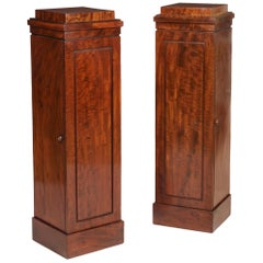 19th Century Pair of Georgian Mahogany Pedestal Cupboards