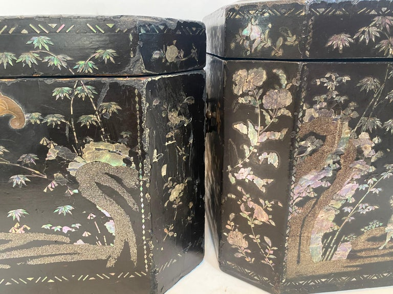 19th Century Two Shell Inlaid Black Lacquer Big Chinese Storage Boxes For Sale 10
