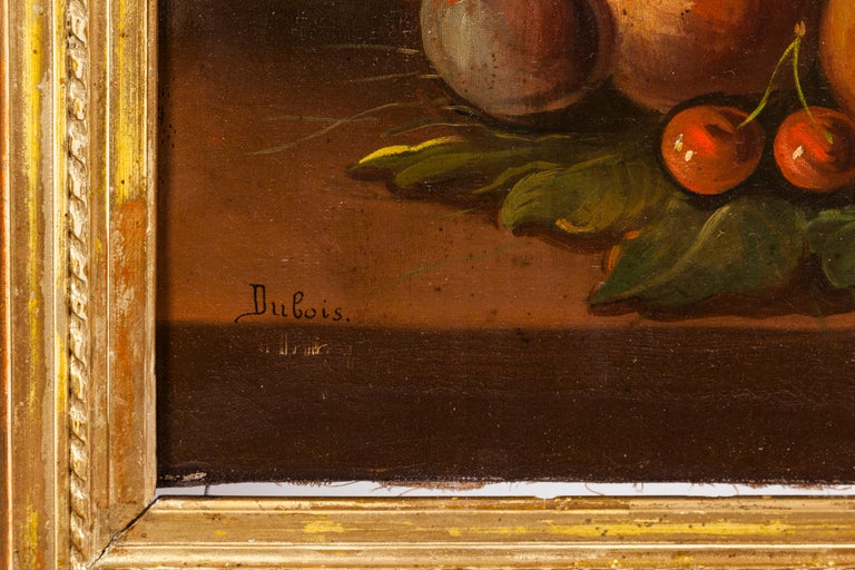 19th Century Pair of Still Lifes Oil on Canvas Paintings In Good Condition For Sale In Tricase, Italia