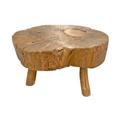 Primitive Tree Trunk Table