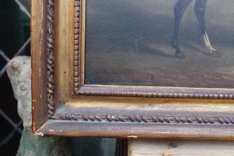 Wood 19th Century Racing Jockey Oil on Canvas Painting, Firmado Por Jhon E. Ferneley For Sale