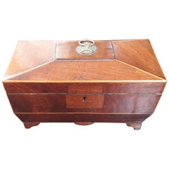 19th Century Regency Mahogany Tea Caddy