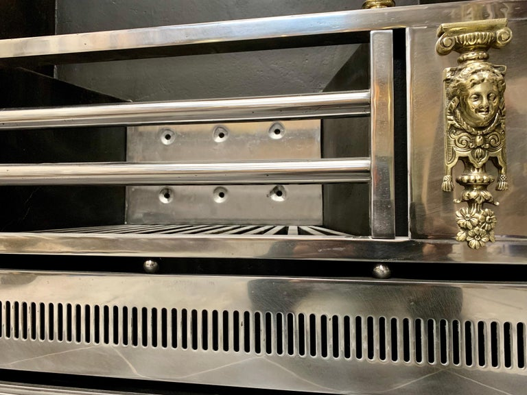 19th Century Regency Style Polished Steel Fireplace Insert For Sale 4
