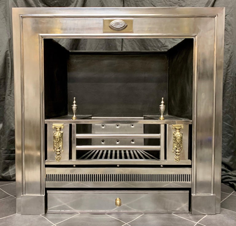 19th Century Regency Style Polished Steel Fireplace Insert For Sale 5