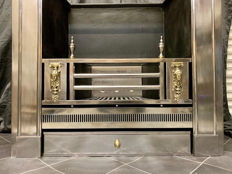 19th Century Regency Style Polished Steel Fireplace Insert For Sale 2