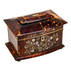 19th Century Regency Tea Caddy Tortoishell and Mother of Pearl English Box