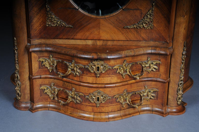 19th Century Rococo Top Cabinet Walnut Root, Germany For Sale 3