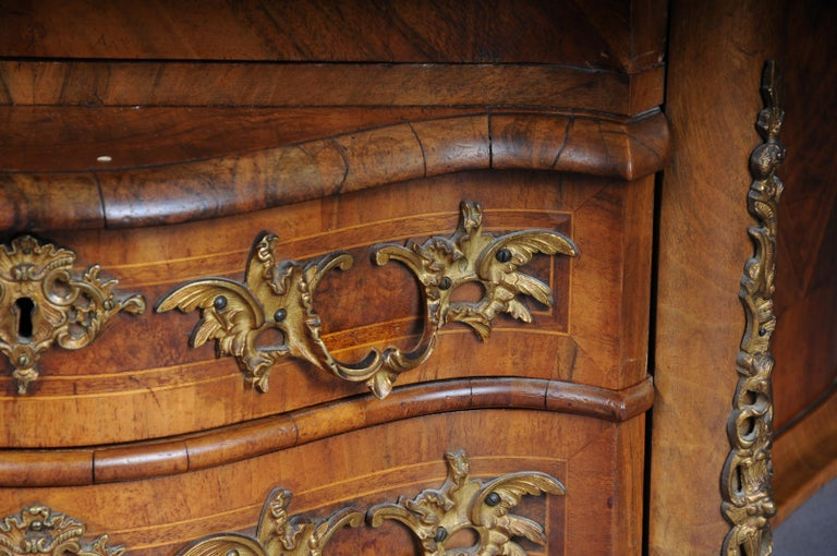 19th Century Rococo Top Cabinet Walnut Root, Germany For Sale 4