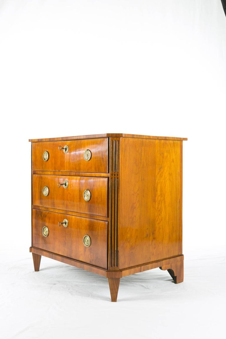 19th Century Rosewood Chest of Drawers 2