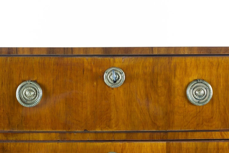 19th Century Rosewood Chest of Drawers 4