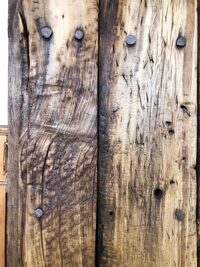 Rustic 19th Century Sabino Wood Door Found in Western México For Sale
