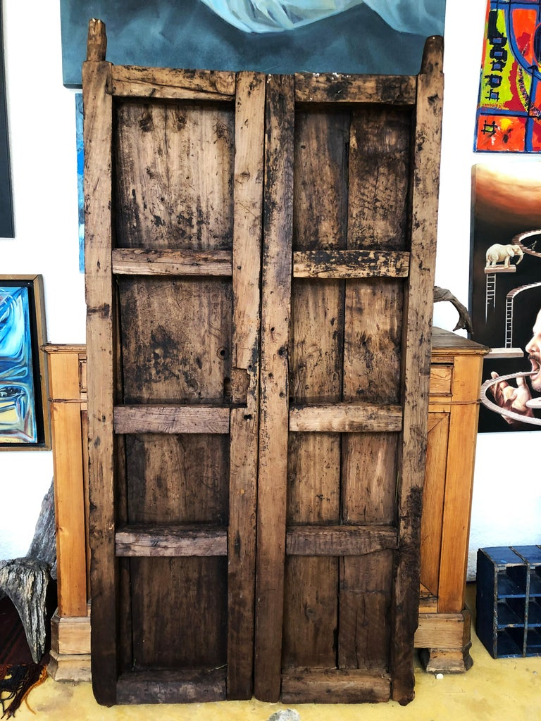 Mexican 19th Century Sabino Wood Door Found in Western México For Sale