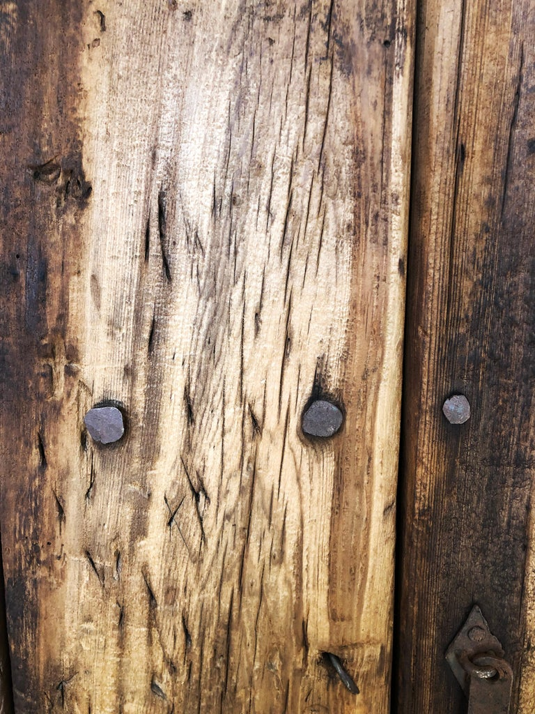 19th Century Sabino Wood Door Found in Western México For Sale 1