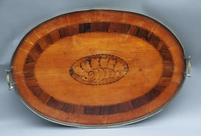 19th Century Satinwood, Brass and Inlaid Tray For Sale 1