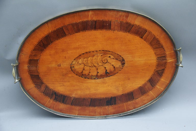 19th Century Satinwood, Brass and Inlaid Tray For Sale 2